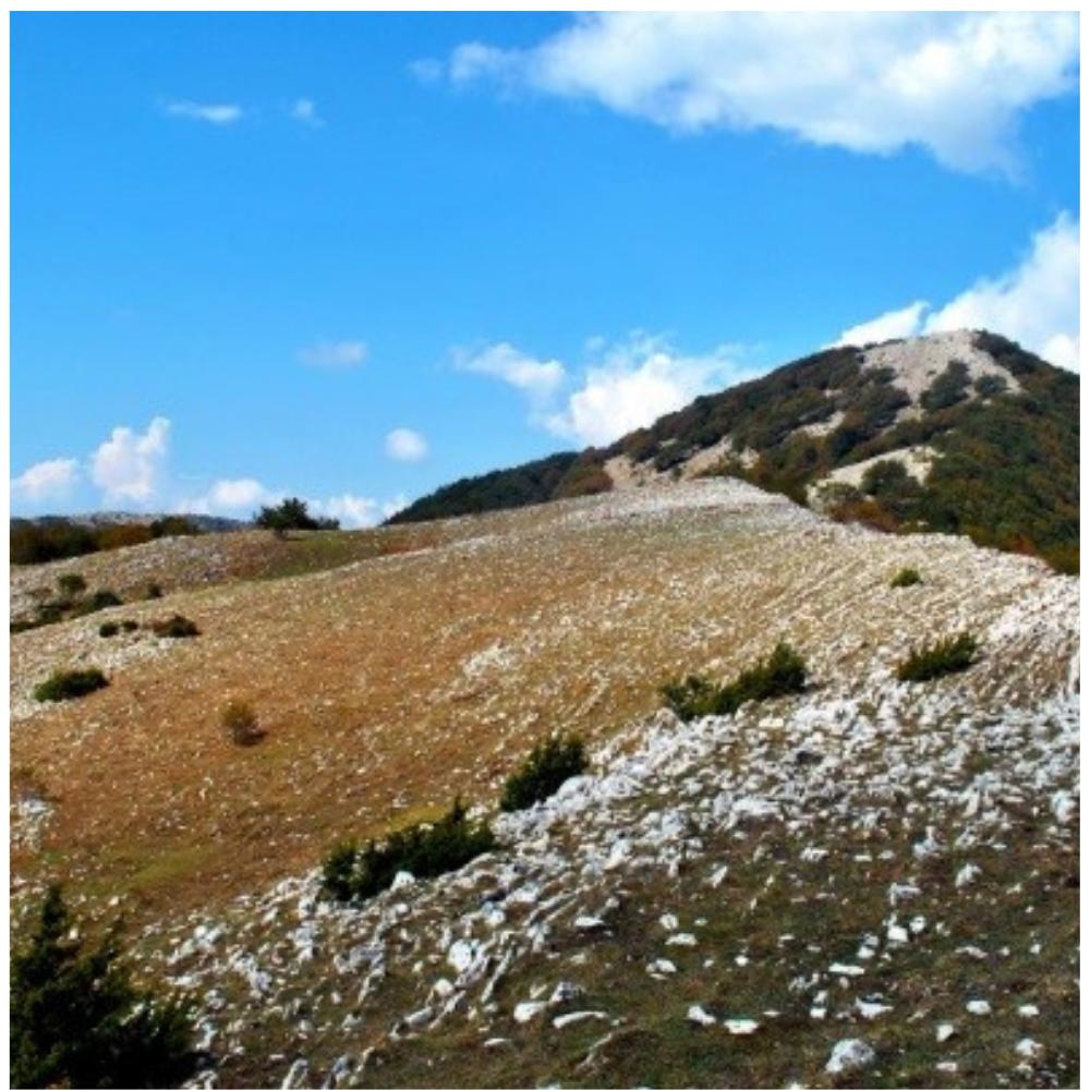 Monte-Tancia